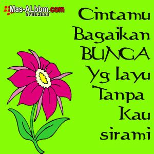 dp bbm  gambar bunga animasi lawak jowo