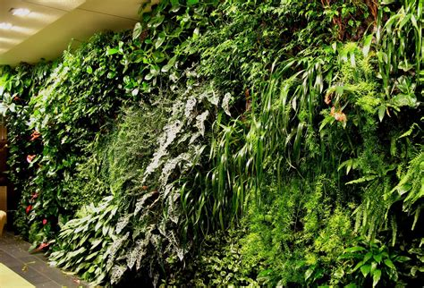 Vertical Gardens Blanc Vertical Gardens My So Called Luck