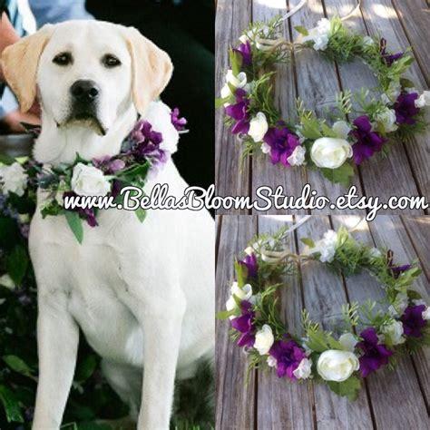 Wedding Attire Dogs by Wedding Attire