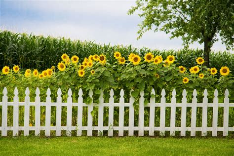 129 Fence Designs Ideas Front Backyard Styles Flower Garden Fencing