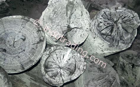 Jual Batok Kelapa Di Jawa Tengah jual arang kayu distributor di indonesia supplier
