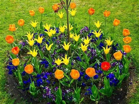 blumenbeet ideen 33 beautiful flower beds adding bright centerpieces to
