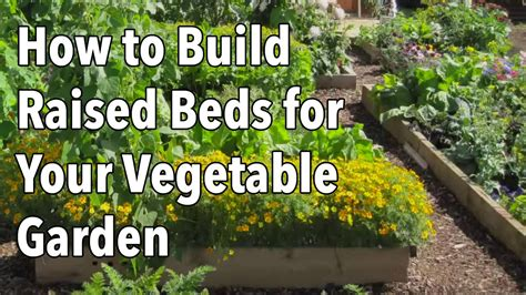 How To Build Raised Beds For Your Vegetable Garden Youtube How To Make A Vegetable Garden In Your Backyard
