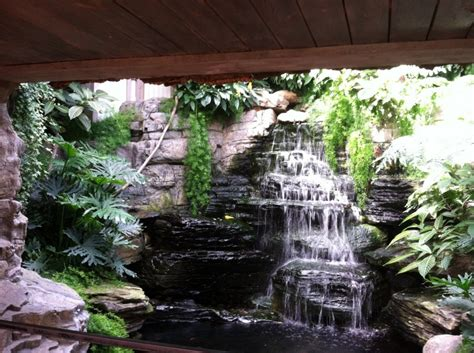 decorative waterfalls for home paludarium half water half land not your average home