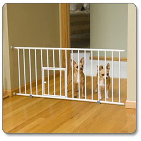 short dog gates for the house amazon com carlson 0680pw mini gate with pet door white pet doors and supplies