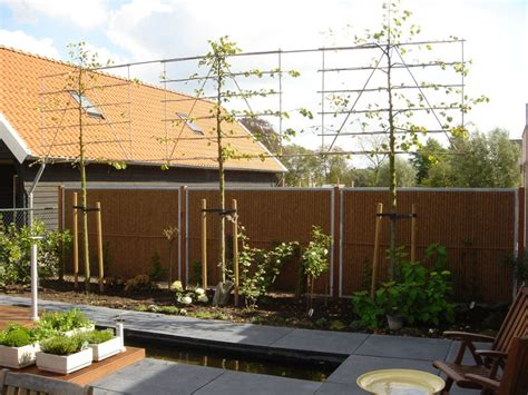 Garden Screening Ideas Outdoor Privacy Screens Kokowall Garden Privacy Screen Burgeon Garden Privacy
