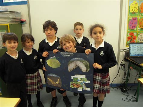 sek el castillo 5 de primaria blog los trabajos de life circle en equipo