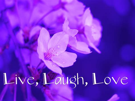 3d wallpaper of love quotes live laugh love desktop wallpaper wallpapersafari