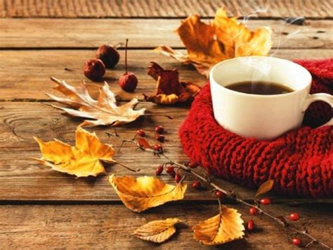 coffee autumn wallpaper coffee cozy fall leaves sweaters image 3779889 by