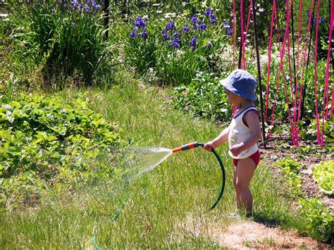the little gardener little gardener