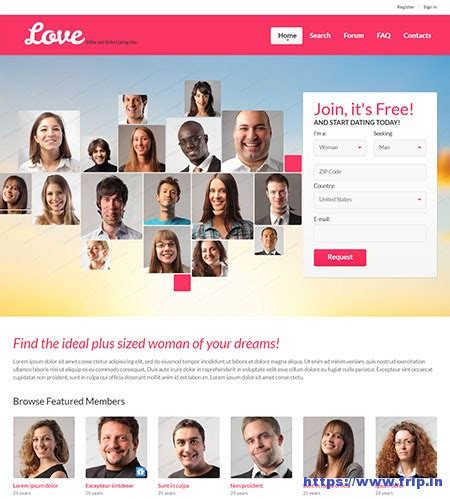 7 Best Dating Website Templates 2017 Frip In Best Dating Website Template