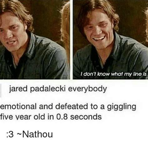 Jared Meme - 25 best memes about jared padalecki jared padalecki memes