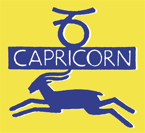 your go to guide for understanding a capricorn male s behavior