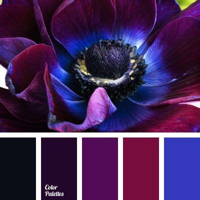 colors that go good with black colors that go well with dark purple roselawnlutheran