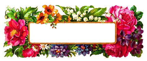 frame design flower antique images digital flower label blank wildflower