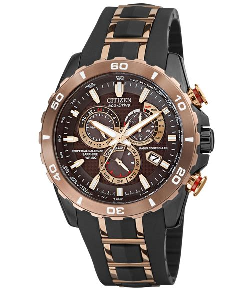 Hush Puppies Hp049 Brown Black Rosegold citizen s eco drive perpetual chrono a t gold tone stainless steel and black rubber