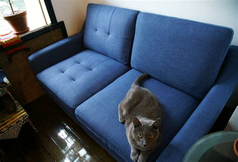 pet friendly sofa covers friendly sofa with friendly sofa with