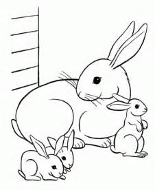 bunny coloring pages free printable rabbit coloring pages for