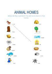 free printable animal homes worksheets english teaching worksheets animal homes