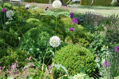 fiori a novembre le piante e i fiori di novembre living corriere