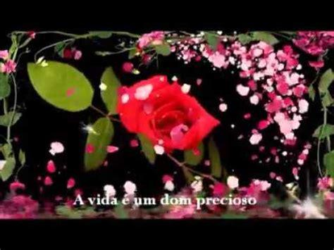 imagem lindas para zap linda mensagem com umas lindas imagens de flores youtube