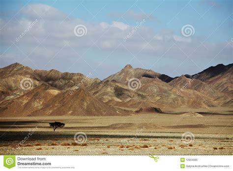 imagenes paisajes egipcios paisajes egipcios