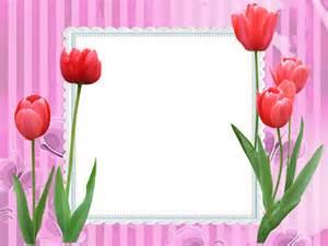 Download image sandra molduras digitais tulipas pc android iphone