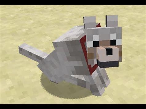 dog playing fetch  minecraft youtube