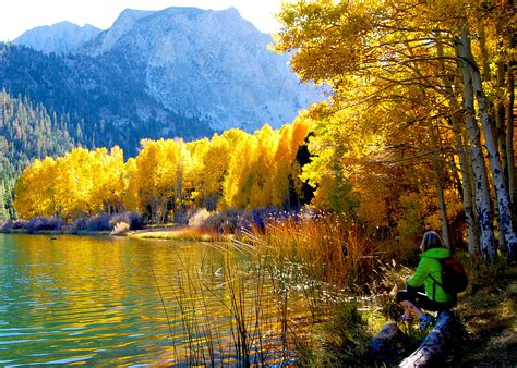 california fall colors california plumas county claims fall color crown this