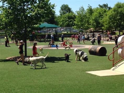 dogs in dreams roam the best pet parks across the eastern us figo pet insurance