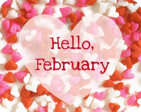 valentines month happy february month daily