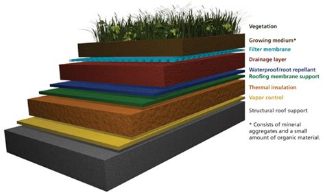 section of green roof what is a green roof technical preservation services