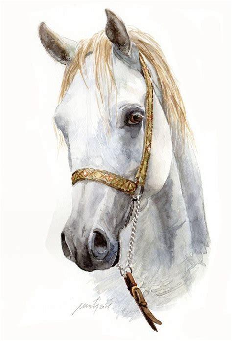 teste di oltre 1000 idee su testa di cavallo su cavalli