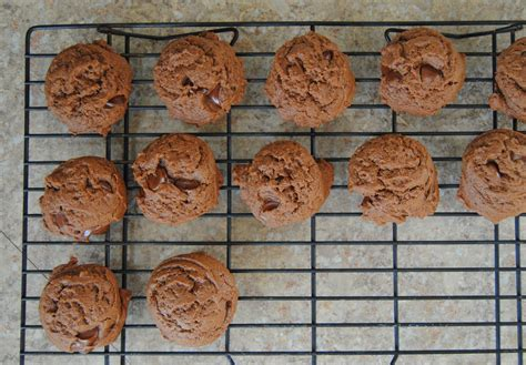 nestle toll house cookie recipe nestle toll house brownie cookie recipe good food recipes