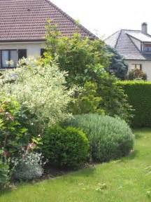 massif arbustes decoratifs