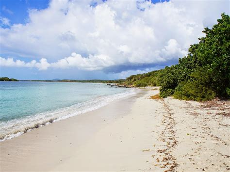 by puerto rico channel puerto rico travel your puerto vieques puerto rico beach guide travelchannel com