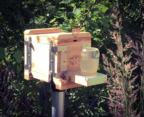 eco bee box modern beehives bees bees pinterest