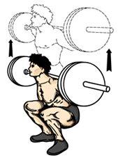 Proper Bench Press Techniques Squat Exercise Wikipedia