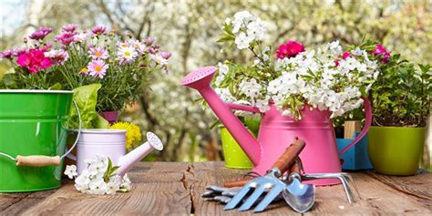 Diy Backyard Ideas For Kids A Guide To Starting Your New Spring Garden Lifestyle Home