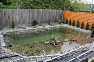Backyard Pond Pool This S Backyard Plan Sounded At I M Blown Away By The Results Sf Globe