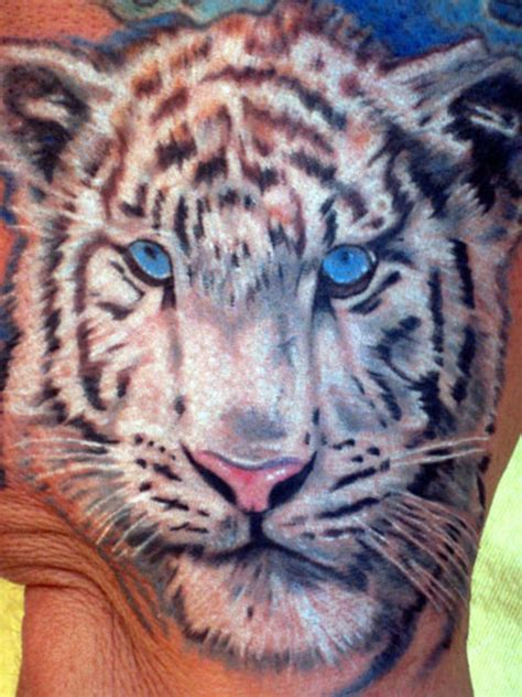 blue tiger tattoo white tiger www pixshark images