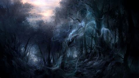 wallpaper new dark dark forest wallpapers wallpaper cave