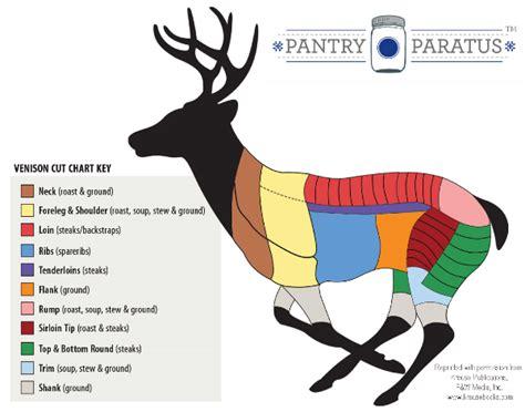 butchering a deer diagram yahoo 301 moved permanently