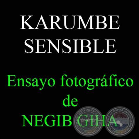 gaby mi ensayo de reciclaje portal guaran 237 karumbe sensible 2008 ensayo