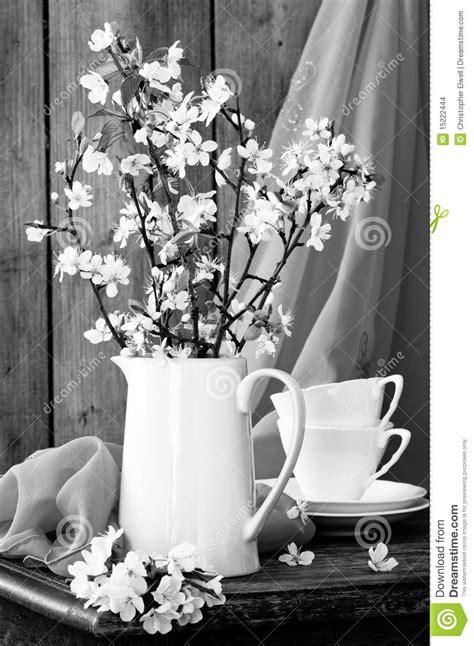 life  black white stock images image