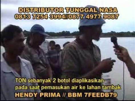 Pupuk Organik Tambak Bandeng 081372543994 teknis pembesaran budidaya udang dan bandeng