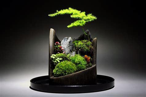 Bonsai Rock Garden Rock Pot Our Micro Villa Garden Rock Bonsai And Chsbahrain