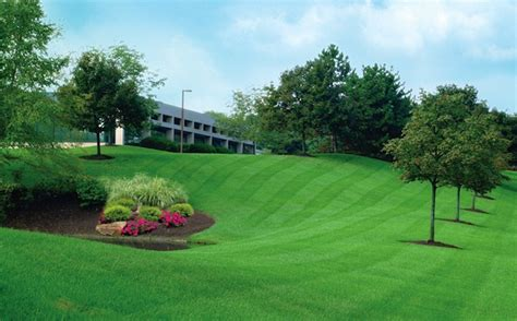 commercial lawn care maintenance atlanta ga 187 atlanta