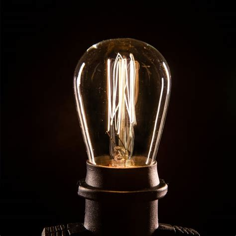 Led Edison String Lights by 17 Best Images About Designer Edison Light Bulbs On