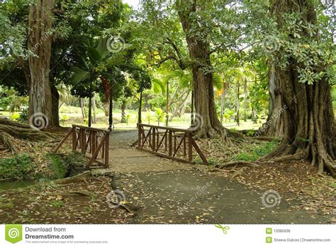 small wooden bridge small wooden bridge royalty free stock image image 13385936